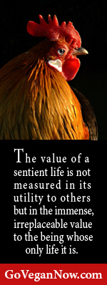 the value of a life